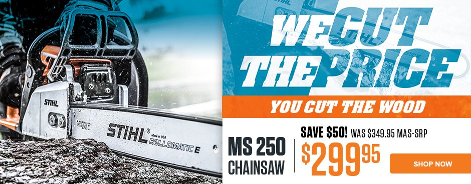 MS 250 Chainsaw